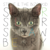 Steye & The Bizonkid - SuperSilverStrawBerry